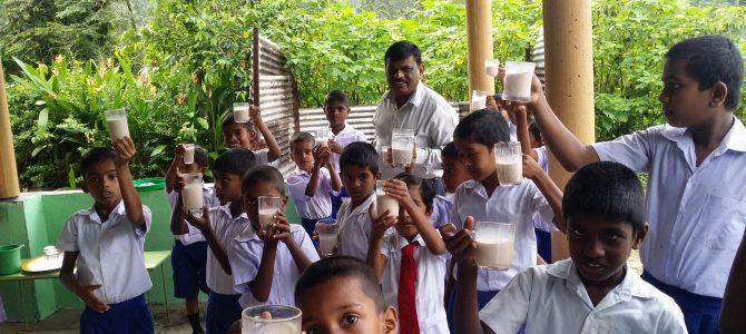 Maaltijden voor alle kinderen op de Bembada school in Yatalamatta